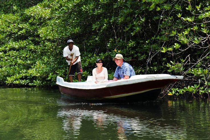 Mangrove Tour (Lembongan Island)