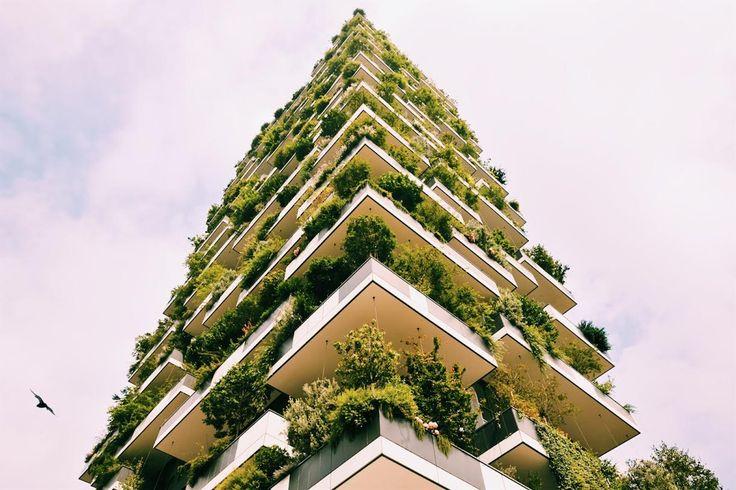 Tekst: Juliet og Sunniva Hvordan kan man kombinere travelt byliv med harmonisk natur? Lage briljante bygninger samtidig som man tenker på miljøet? Arkitekten Stefan Boari har funnet svaret.
