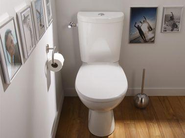 Idée déco WC toilettes peinture grise et parquet