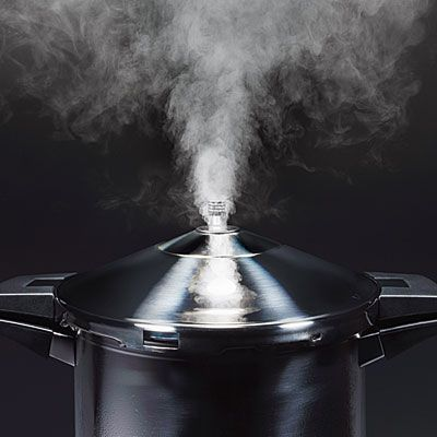 A Collection of Healthy Pressure Cooker Recipes---Cooking Light