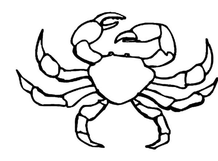 Blue Crab Coloring Pages Animal Coloring Pages, Horse Coloring Pages, Coloring  Pages