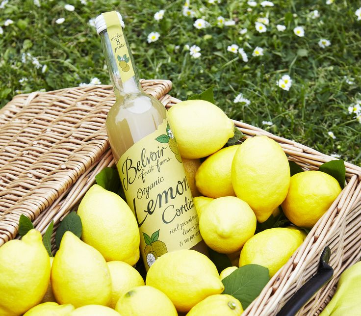Organic Lemon Cordial - over flowing with zestyness captured from the oil naturally found in the rind.