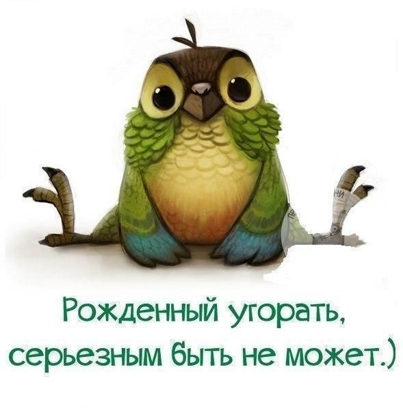 Я.Сумишевский - Люблю