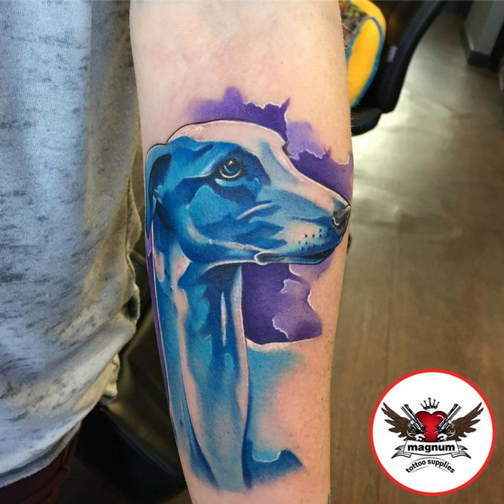 Colourful dog piece by Rich Knight created with #magnumtattoosupplies 🐶🐶   #worldfamousink #tattoo #bournemouth #tattoosformen #tattoosforwomen #tattooartist #skindeep #skinshots
