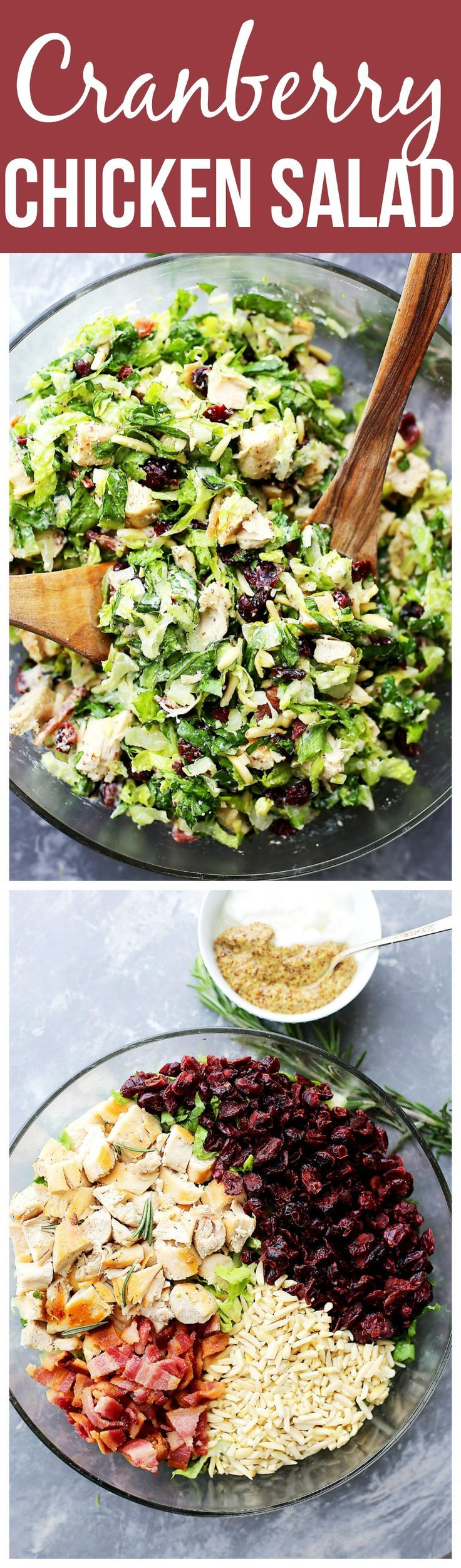 Cranberry Chicken Salad with Light Dijon Parmesan Dressing - Festive and delicious chicken salad packed with sweet cranberries, crunchy almonds, crispy bacon, and a creamy salad dressing that is lightened up, yet very flavorful!