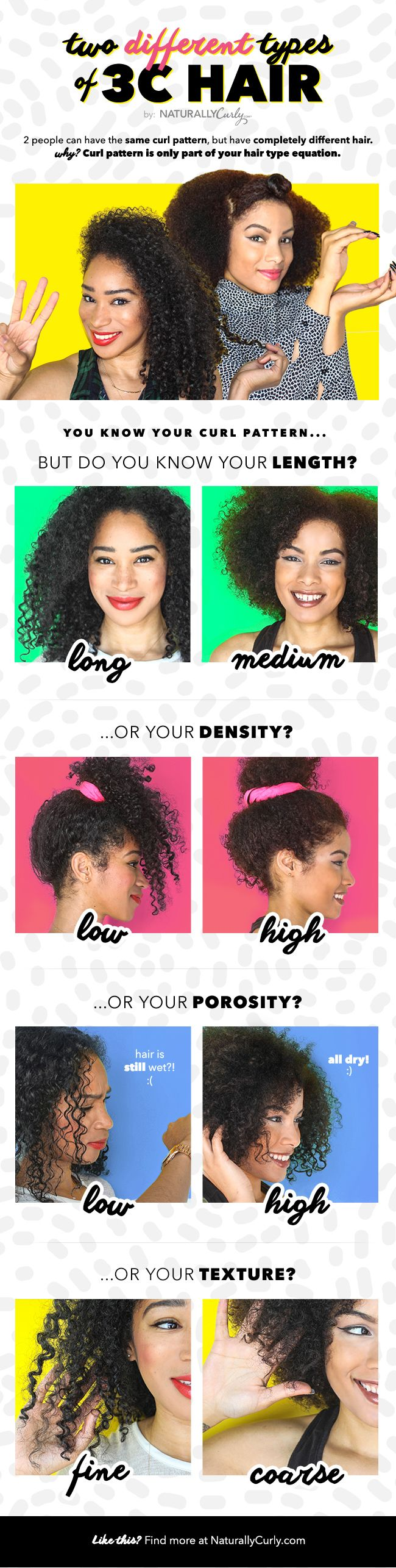 3c hair infographic. My hair is not as curly but it shows really nicely differences within one type of hair. Both ladies have beautiful hair by the way ☺