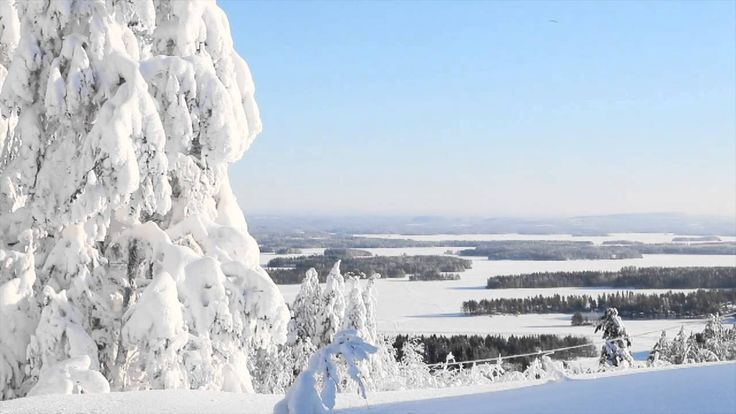 Video from the snowmobile trails at Tahko, Kuopio, Finland.