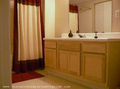 Large Bathrooms With Plenty Of Storage! @ Mt. View Apartments, Tuscaloosa,  Alabama
