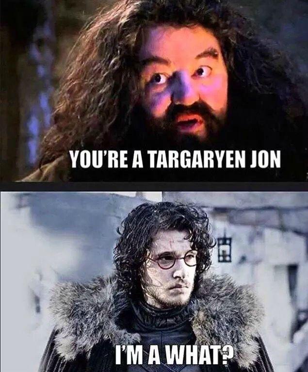 Jon Targaryen  http://www.gameofthronescollectables.com/  #gameofthrones #gameofthronesmerchandise #gameofthronescollectables #jonsnow #harrypotter