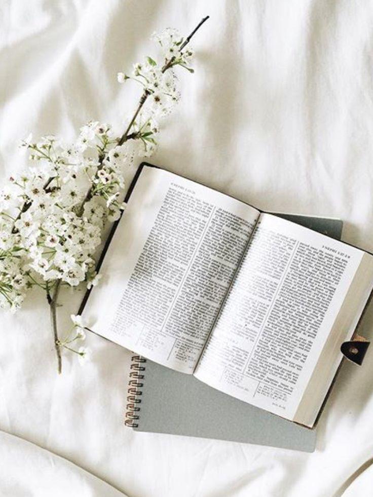 @kamplainnn ❃ bible study christian