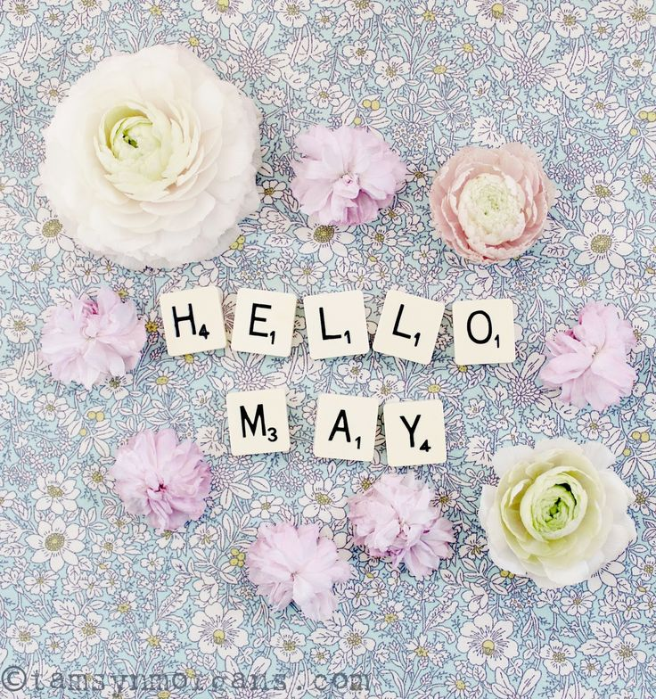 Hello everyone, Happy May Day! Here in the UK we have an extended Bank Holiday weekend, so we don't have to go to work tomorrow which is lovely!  We have…