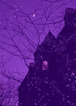 Purple Aesthetic Pictures Halloween