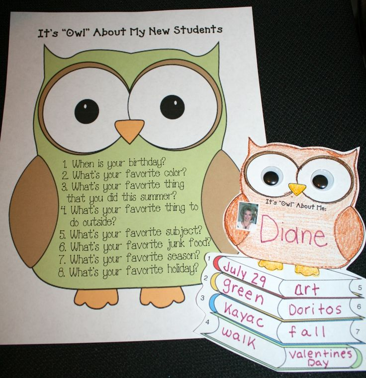 It's Owl About Me Icebreaker
