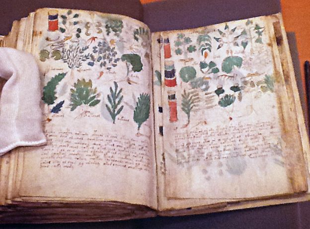 The riddle of the Voynich Manuscript.  Excellent BBC article at link on the manuscript's history and what it may represent.