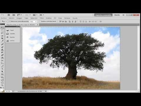▶ curso photoshop cs6 i clase 1(como borrar fondos dificiles) - YouTube
