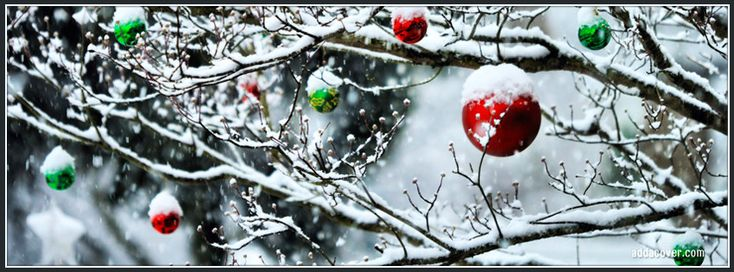 Ornaments on a Tree Facebook Cover