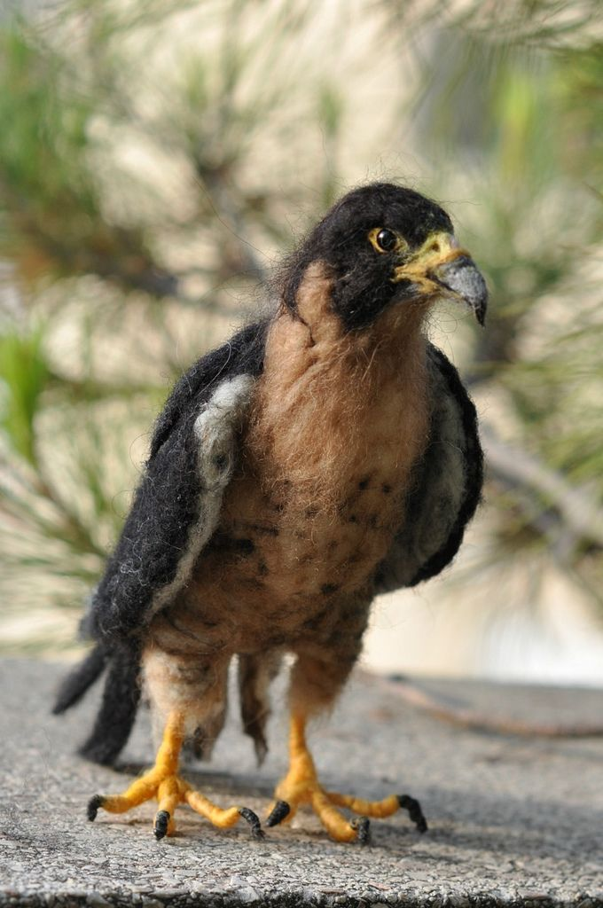 Amazing felted falcon ~
