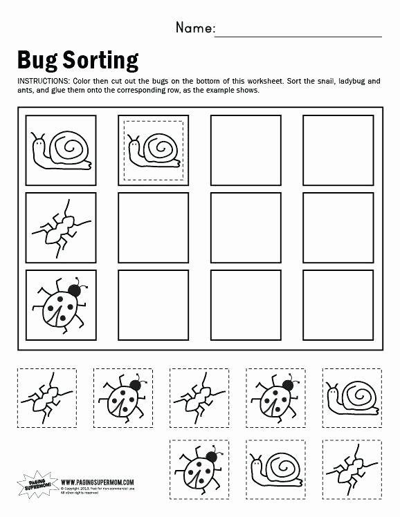 Kindergarten Math Sorting Worksheets Kindergarten Math Worksheets Measurement And Data Sorting Bugs Preschool Kindergarten Worksheets Kindergarten Math Kindergarten sorting worksheets