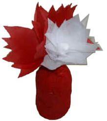 Flores de papel de seda y florero con frasco de jugo para el día de Canadá