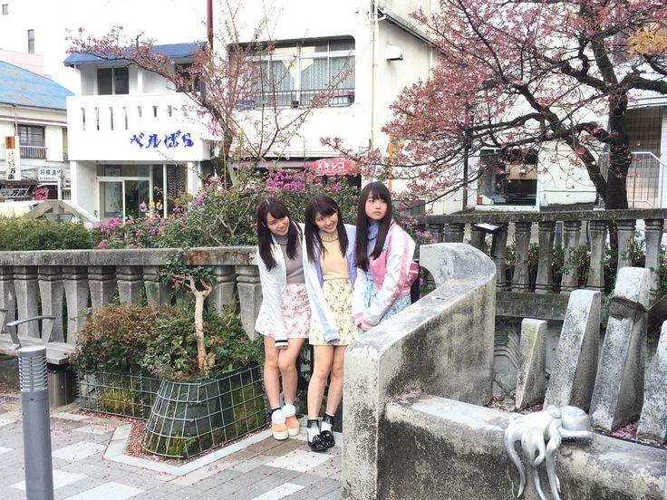 omiansary27: http://blog.nogizaka46.com/ Himetan   日々是遊楽也
