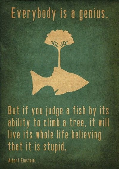 """Everybody is a genius. But if you judge a fish by its ability to climb a tree. It will live its whole life believing that it is stupid"" -Albert Einstein"