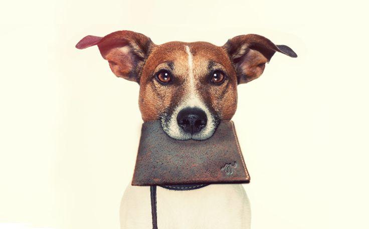 http://blog.designersko.pl/woolet-sprytny-portfel-ktorego-nie-jestes-w-stanie-zgubic/ - Woolet - smart wallet. Portfel, którego nie jesteś w stanie zgubić!