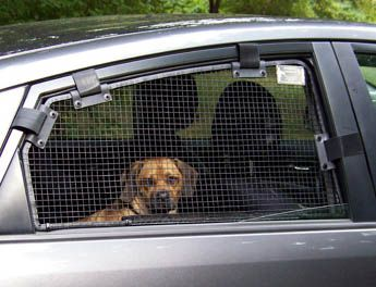 Breezeguard Metal Car Window Guard Screens Pooch