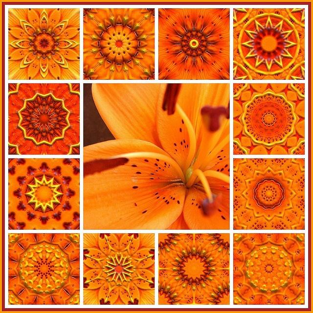 Caleidoscopios anaranjados 5681
