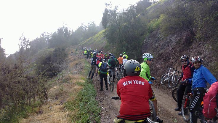 El taco de bicicletas #pedaleoalbosque