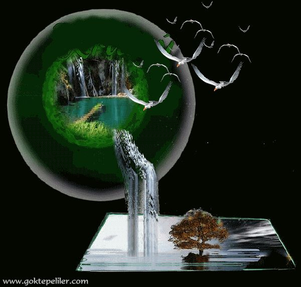 1728 best images about animated pictures on pinterest for Plante 3d gratuit