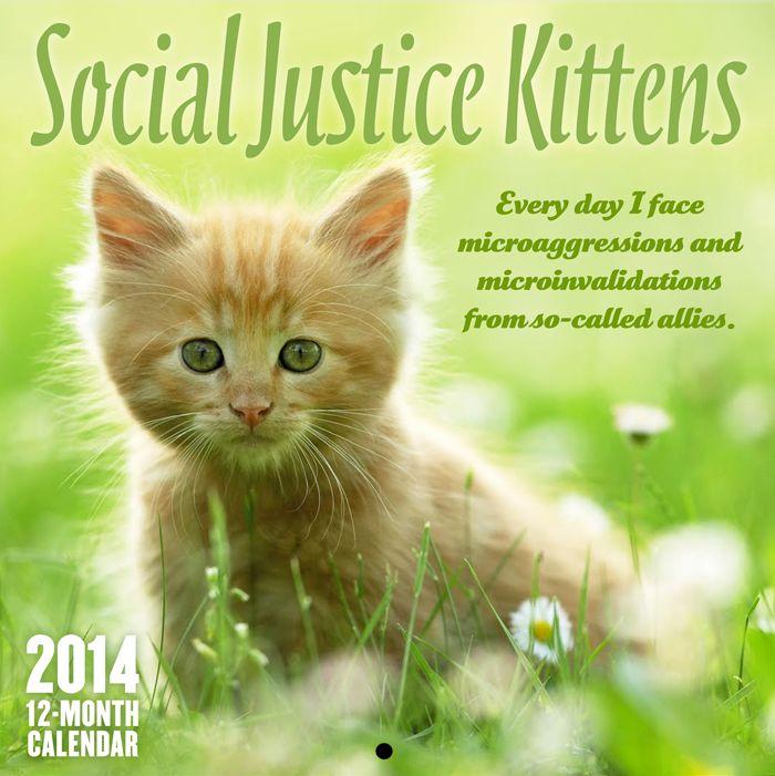 Social Justice Kittens 2014 Calendar