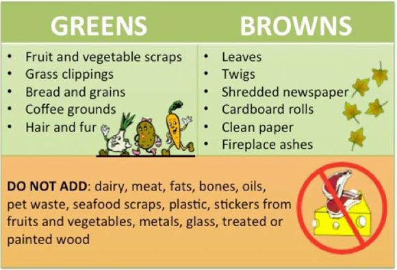 Want Great Compost? Think Brown and Green!