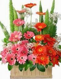 Florist Kencana - Toko Bunga Bandung Murah menyediakan jasa produksi dan pengiriman karangan bunga ucapan selamat dan sukses, selamat ulang tahun, anniversary dan rangkaian bunga duka cita. Workshop Florist Bandung: Jl. Mohammad Toha, Tegallega Bandung. Telp/SMS/WA 085314701682, PinBB: 56D00C10