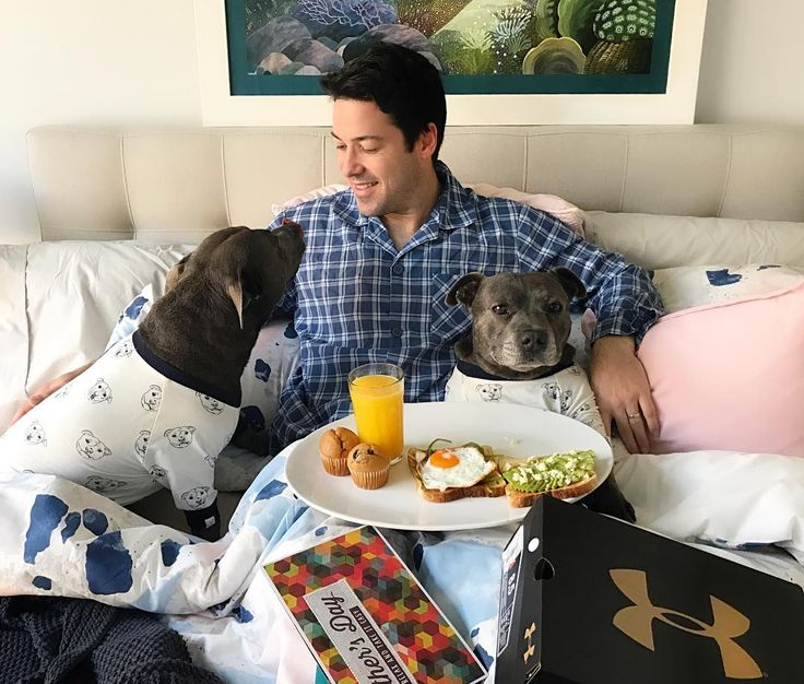 Happy Fathers Day Dad! We made u dis yummy breakfast to say thank you for being a great Dad. Ur a Dad who takes us for runs every single day (much to phillys displeasure but my delight) even if you're tired bc u care about us. Ur a Dad who can't say no to letting us snuggle u in the bed even though our hair makes ur tummy itch. Ur a Dad who iz very big sucker for puppy dog eyes when we've been up to no good. Ur a Dad who hates leaving us and loves coming home to us. And ur a Dad who loves us…