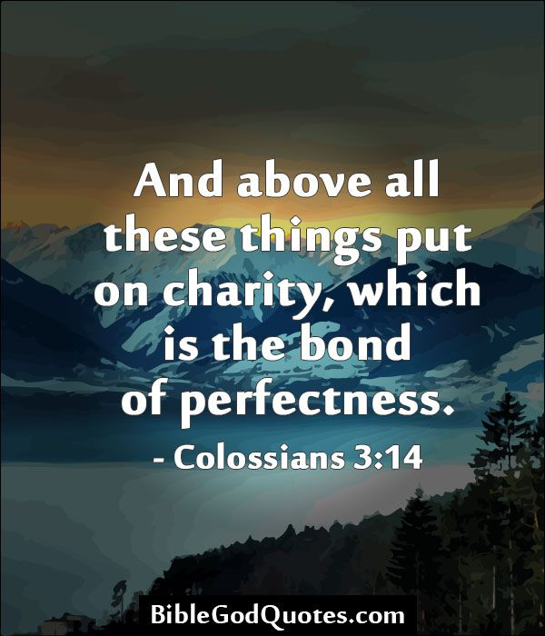 And above all these things put on charity, which is the bond of perfectness. - Colossians 3:14  #charity #quotes