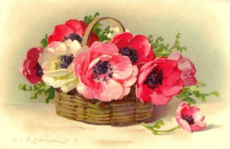 Catherine Klein ~ bright poppies in basket