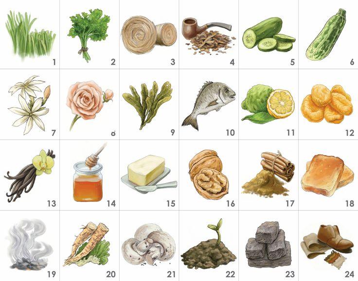 Tee-Aroma-Set (24 Tee Aromen): 1.geschnittenes Gras, 2.Petersilie, 3.Heu, 4.Tabak, 5.Gurke, 6.Zucchini, 7.Jasmin, 8.Rose, 9.Seetang, 10.Fisch, 11.Bergamotte, 12.getrocknete Aprikose, 13.Vanille, 14.Honig, 15.Butter, 16.Walnuss, 17.Zimt, 18.Toast, 19.Rauch, 20.Klettenwurzel, 21.Pilz, 22.Boden, 23.Torf, 24.Leder