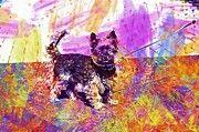 """New artwork for sale! - """" Yorkshire Terrier Dog Small  by PixBreak Art """" - http://ift.tt/2vSiIhk"""