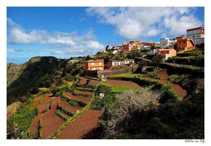 Las Carboneras. Bij een wandeling vanuit Cruz del Carmen (960 m) in het noord-oosten van Tenerife kwamen we door het prachtig gelegen dorp Las Carboneras (650 m) met zijn mooie terrashellingen. (Spain)