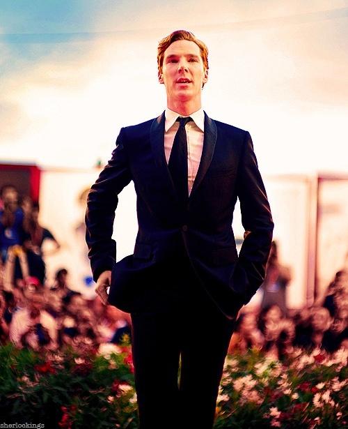 suit suit suit suit SUIT
