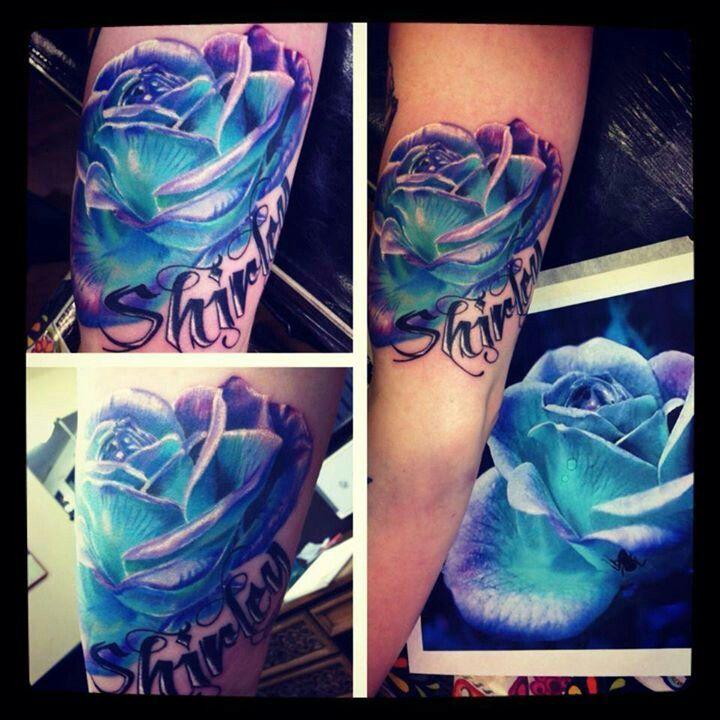 Mooie blauwe roos.