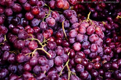 Article: (Organic) Grape Seed Extract Outperforms Chemo in Killing Advanced Cancer Cells