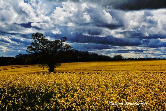 Deddington Oxfordshire English Countryside by OxfordDownloads