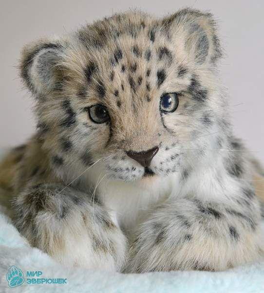 Luna. Snow leopard by By Anastasia Arzhaeva | Bear Pile