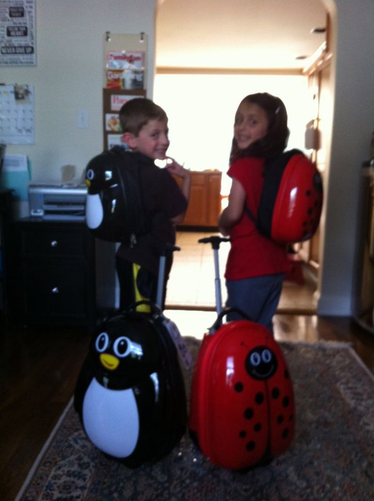 Kid Suitcase Review – Travel Buddies