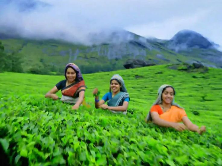 Kerala Tourism: Life in God's own country