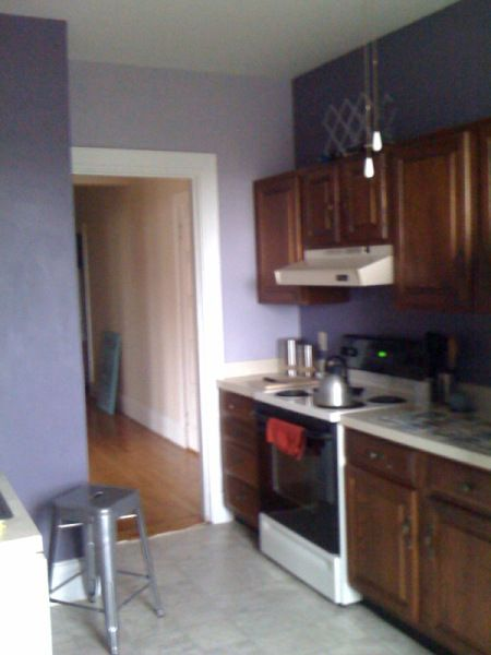 Lavender kitchen wall with the darker eggplant walls on for Aubergine kitchen cabinets