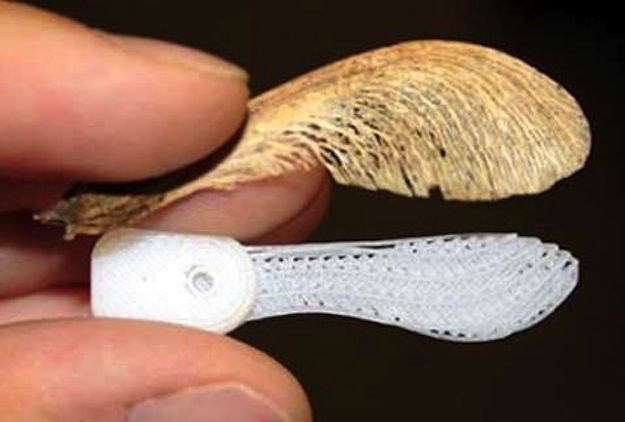 Maple Seed Camera | 10 Badass Spy Gadgets That Are Almost Too Cool To Believe