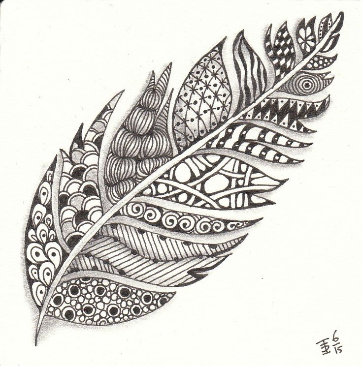 A zentangle feather made by Francine Derks CZT 17.