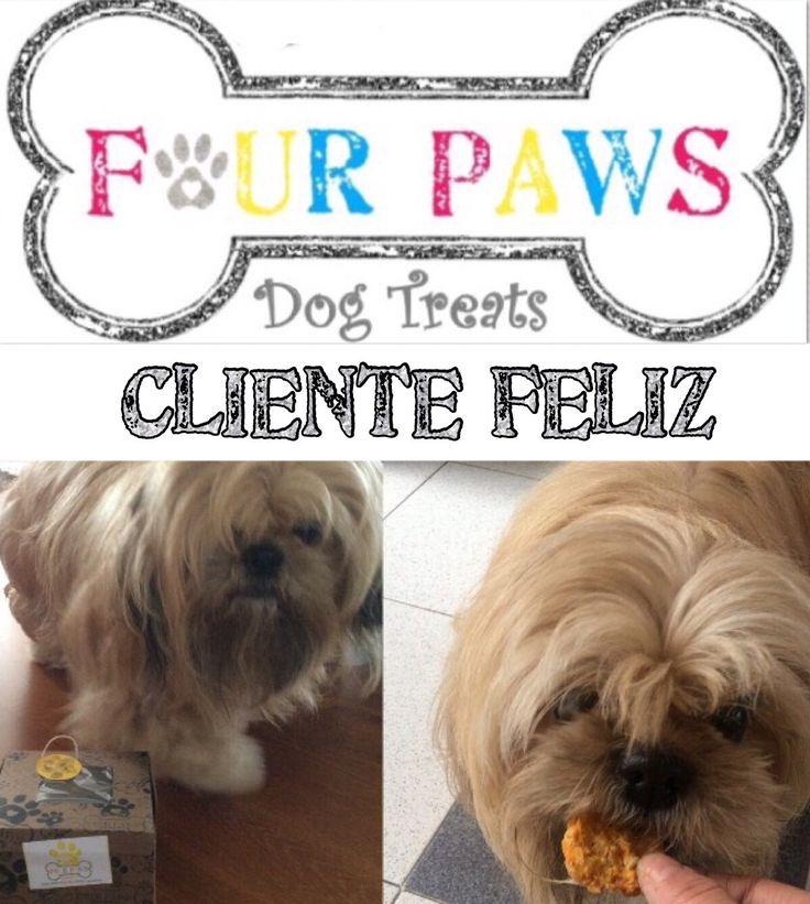 🐶 Cliente Feliz 🍪 Galletas 100% Naturales para nuestr@ Mejor Amig@ 🐶 Libres de: aditivos, colesterol, conservantes, azucar y harina 🏡 Hechas en casa como las de la 👵🏻 abuela 📌 INSTAGRAM @fourpawspet.colombia 📌 FANPAGE  https://m.facebook.com/fourpawspet.colombia/ 📌HASHTAG #fourpawspet #fourpawspetcolombia #dog #cookie #biscuits #dogbiscuits #treats #dogtreats #colombia